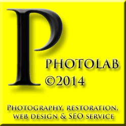 Logo Pollini Photo Lab
